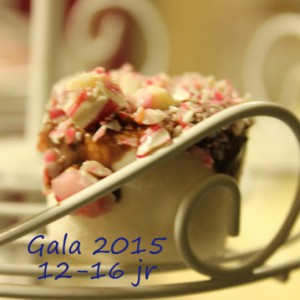 Gala-12-16 2015